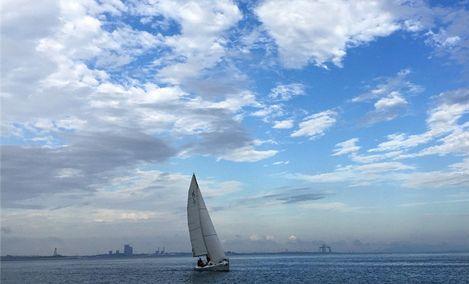 帆船出海体验厦门欣屿旅游 - 大图