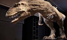 PNSO恐龙艺术展成人套票