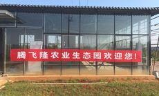 腾飞隆皇家百果园