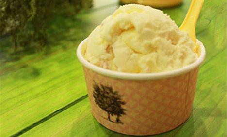 帝娜朵拉意大利冰淇淋