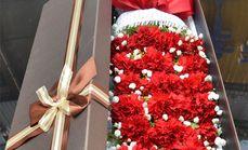 卉香园19朵红色康乃馨礼盒