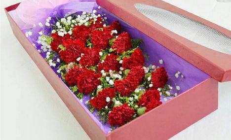 幸福百合鲜花