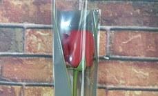 淘点鲜花单支红玫瑰