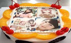 美佳美9寸数码蛋糕