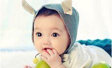 芒果树单人儿童套餐