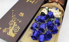 爱慕鲜花11支蓝色玫瑰