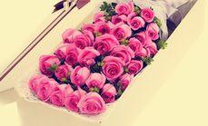 卉香园33支玫瑰礼盒四选一