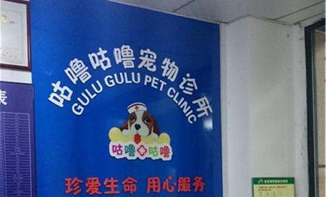 咕噜咕噜宠物诊所
