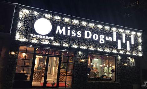 Miss Dog私宠