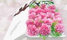 四季花艺19支康乃馨礼盒
