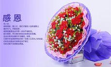 梓怡花坊11朵红康乃馨花束
