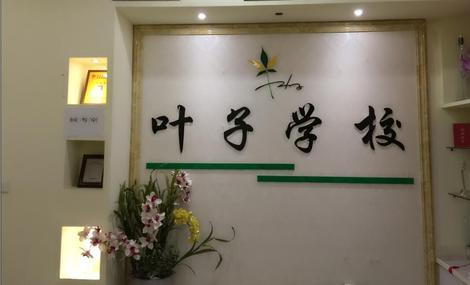 叶子职业培训学校(江东店)