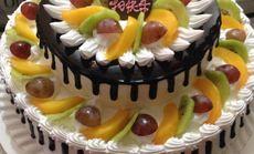 生日蛋糕双层蛋糕