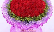 蔷薇花卉288元单人服务