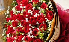 川森艺鲜花33枝红玫瑰