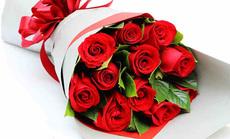 迎春花厅11朵特级玫瑰花束