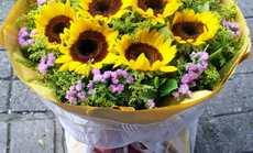 金蔷薇向日葵9枝仅158