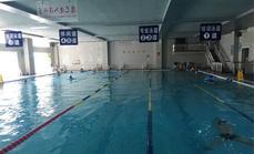 华清温泉宾馆单人游泳票