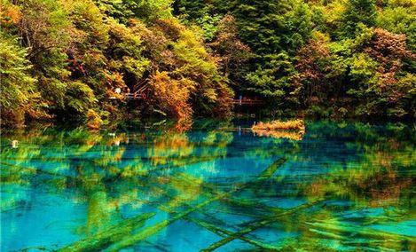 四川省中国青年旅行社 - 大图
