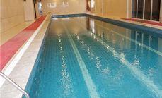 青岛飞鱼游泳俱乐部