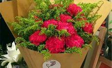 艾诺鲜花11枝康乃馨