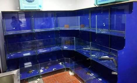 鑫欣水族鱼缸