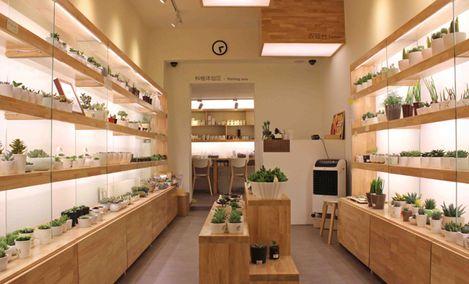 Roop 多肉植物(酒仙桥店)