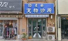 天津名扬宠物医院