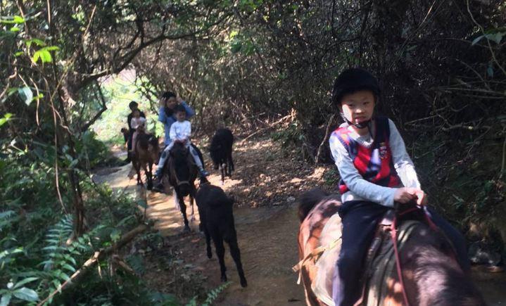 紫云谷骑马场