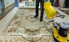智博兴盛清洗地毯