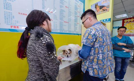 天津市酷卡宠物医院(盛世景园医疗店)