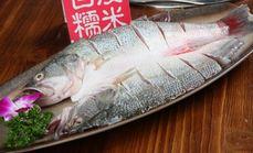 神汤鲈鱼100元代金券