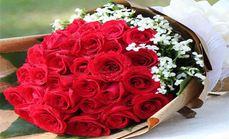 清新鲜花玫瑰扇面套餐