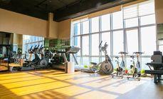 私教健身10天塑形训练