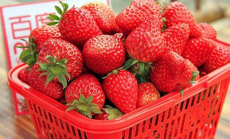 红果果草莓园