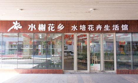 水榭花乡水培花卉生活馆