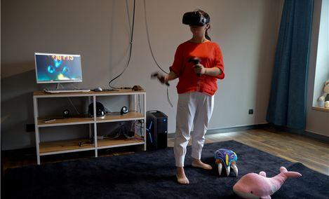 VR-The Future