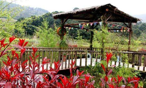 金桥国际旅行社