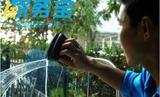 家务宝擦玻璃清洁服务