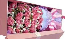 淘点鲜花康乃馨19支礼盒