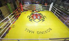 乔士尼泰拳1v1私教课