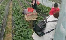 玉园生态农庄