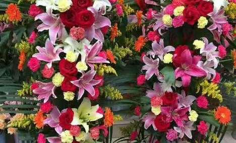 【开阳里】金蔷薇花店