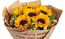 爱慕鲜花6朵向日葵花束