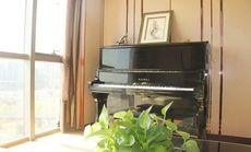 初级钢琴-基础课程培训