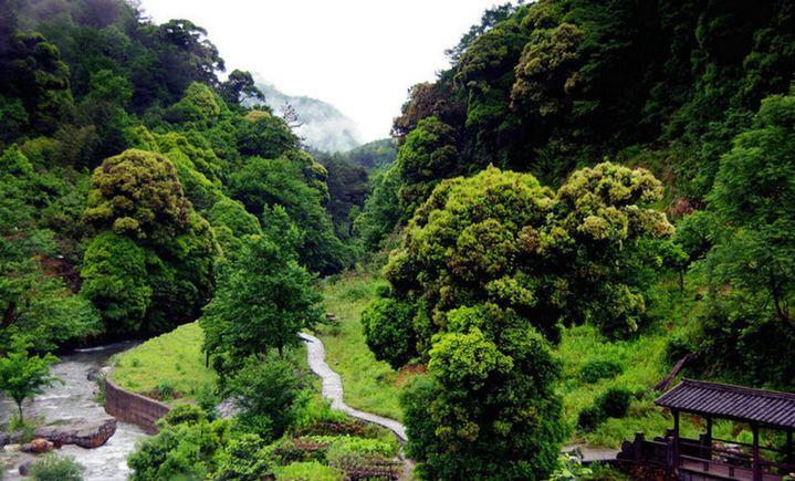 森林氧吧景区