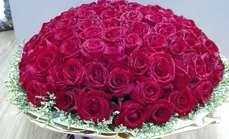 木子99枝红玫瑰花束