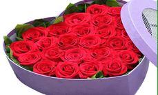 菲儿鲜花屋33枝红玫瑰