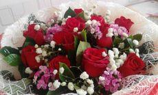 恬静花艺11枝A级玫瑰花束