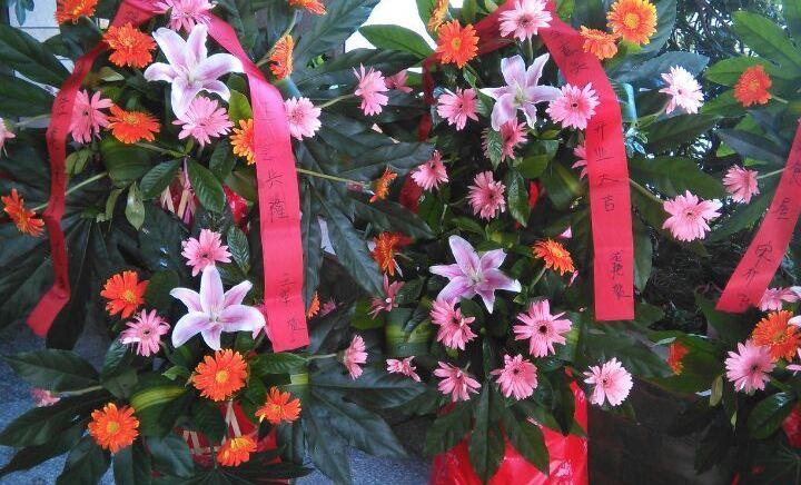 花博汇鲜花